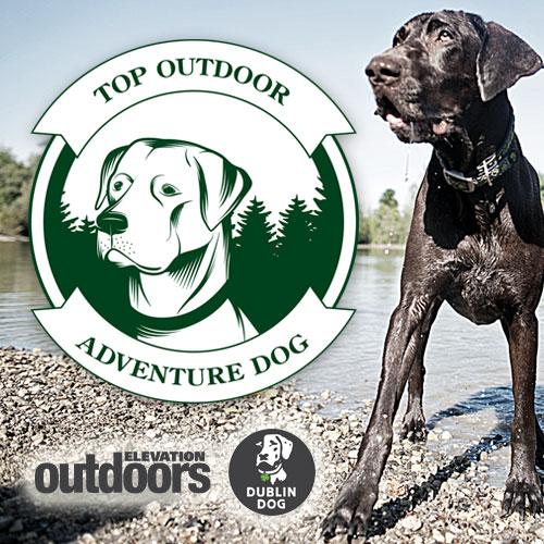 Top Outdoor Adventure Dog Contest