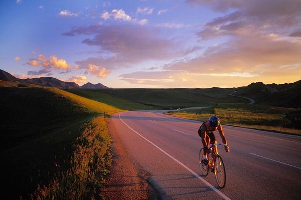CO cycling