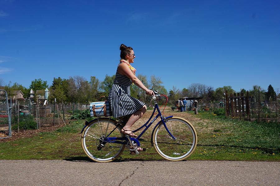 Adventures of a Novice Biker