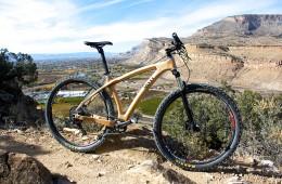 Savvy Cycles Mountain bike