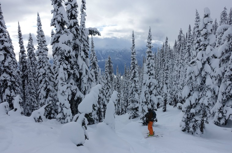 Revelstoke, British Columbia.