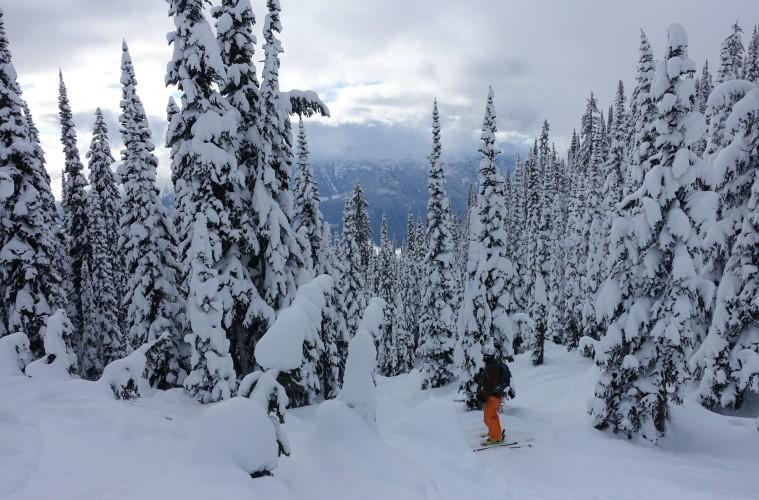 Revelstoke, British Columbia.