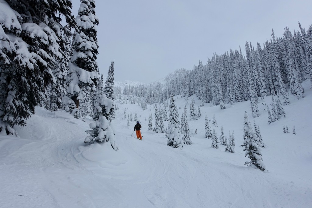Revelstoke and Kicking Horse