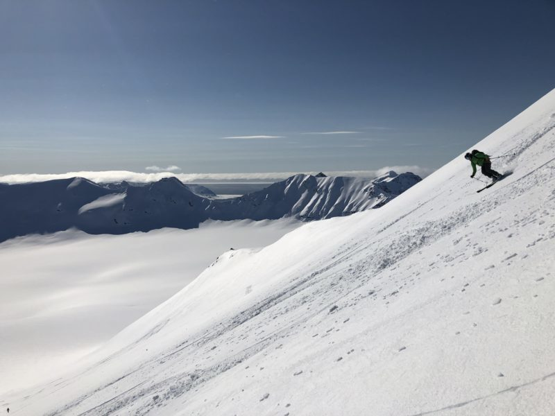A guest skiing in Svalbard